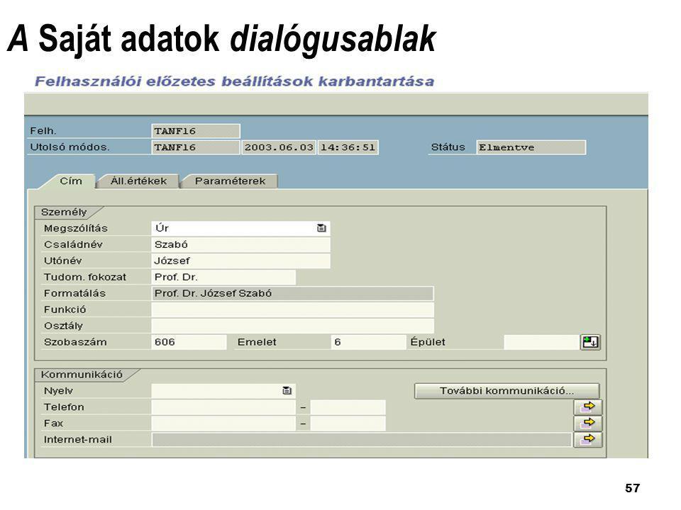 57 A Saját adatok dialógusablak