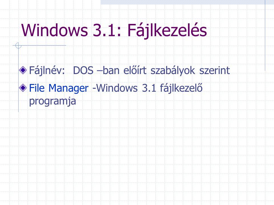 Windows 3.1: Fájlkezelés Fájlnév: DOS –ban előírt szabályok szerint File Manager -Windows 3.1 fájlkezelő programja