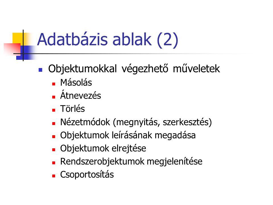 Adatbázis ablak (2)  Objektumokkal végezhető műveletek  Másolás  Átnevezés  Törlés  Nézetmódok (megnyitás, szerkesztés)  Objektumok leírásának megadása  Objektumok elrejtése  Rendszerobjektumok megjelenítése  Csoportosítás