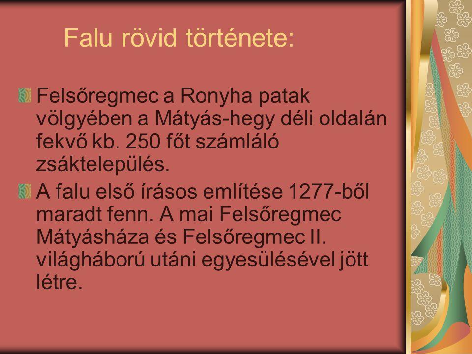 Falu rövid története: Felsőregmec a Ronyha patak völgyében a Mátyás-hegy déli oldalán fekvő kb. 250 főt számláló zsáktelepülés. A falu első írásos eml