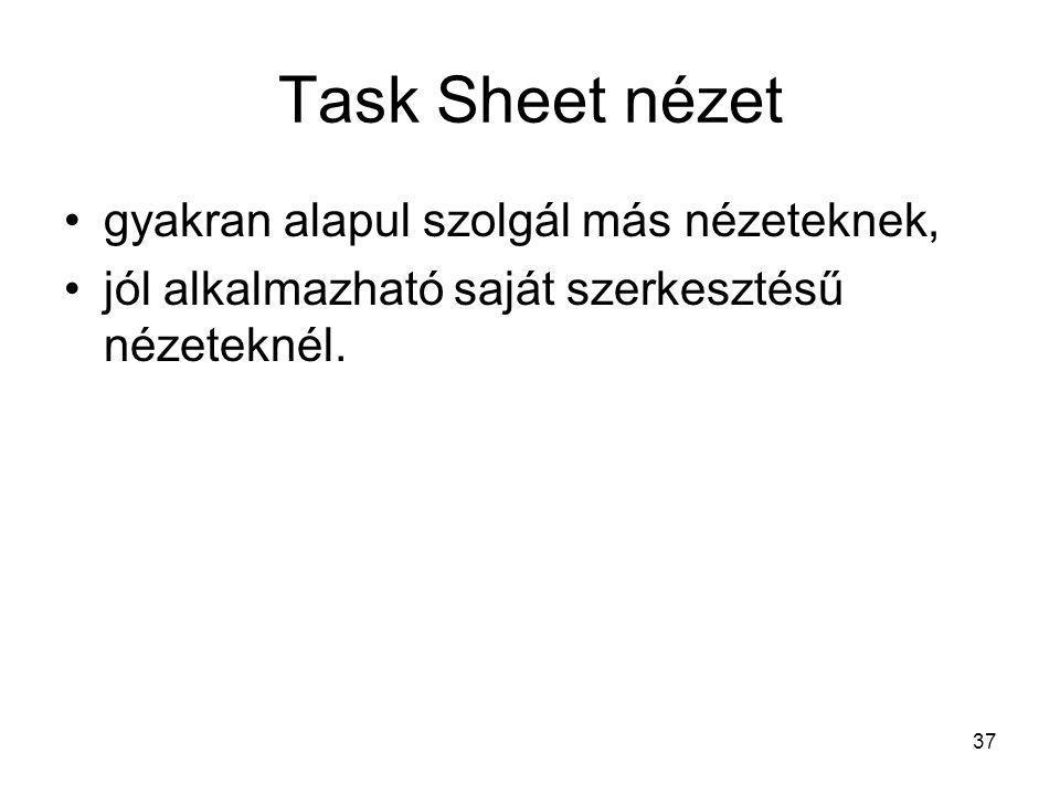 Task Sheet nézet •gyakran alapul szolgál más nézeteknek, •jól alkalmazható saját szerkesztésű nézeteknél. 37
