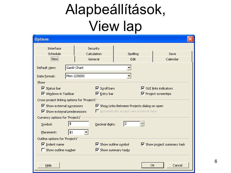 Task Sheet nézet •gyakran alapul szolgál más nézeteknek, •jól alkalmazható saját szerkesztésű nézeteknél.