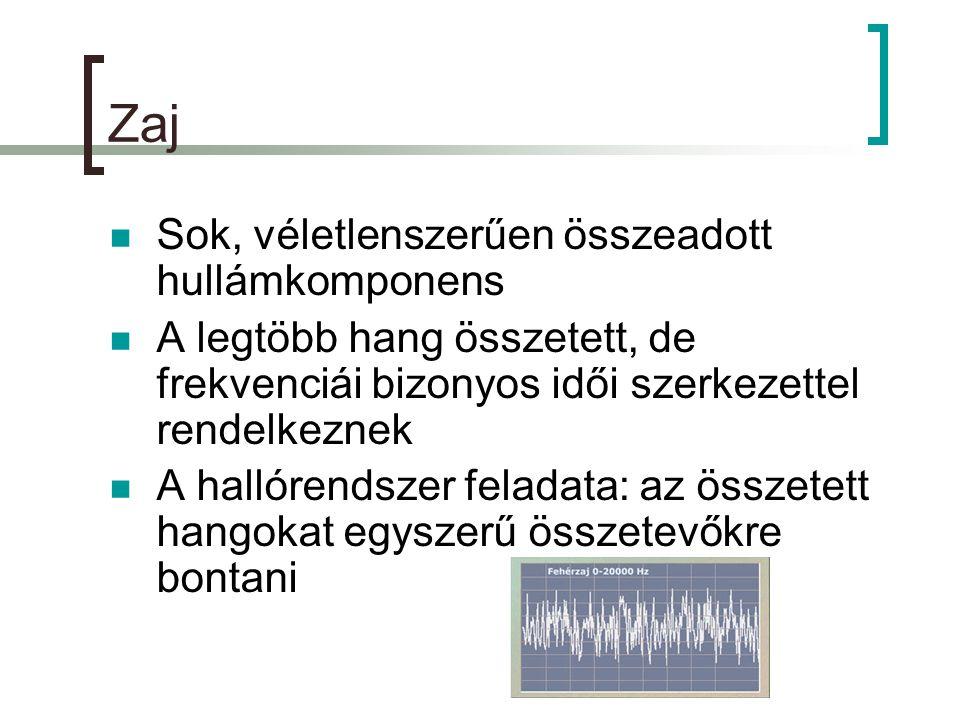 Zaj  Sok, véletlenszerűen összeadott hullámkomponens  A legtöbb hang összetett, de frekvenciái bizonyos idői szerkezettel rendelkeznek  A hallórendszer feladata: az összetett hangokat egyszerű összetevőkre bontani