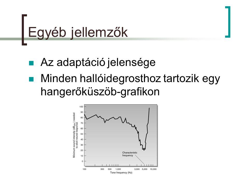 Egyéb jellemzők  Az adaptáció jelensége  Minden hallóidegrosthoz tartozik egy hangerőküszöb-grafikon