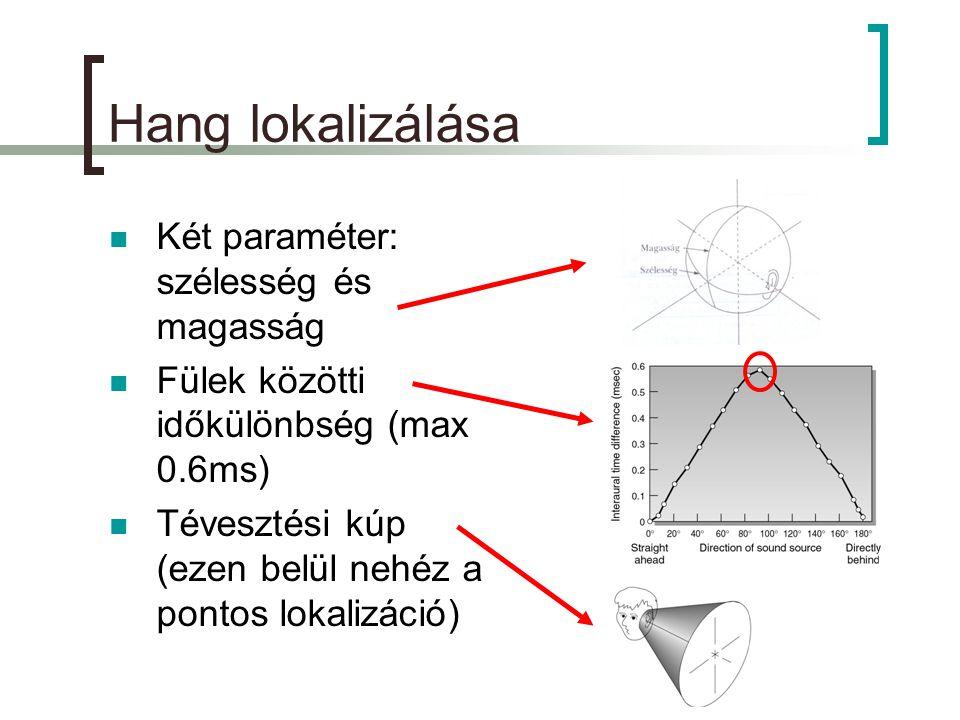 Hang lokalizálása  Két paraméter: szélesség és magasság  Fülek közötti időkülönbség (max 0.6ms)  Tévesztési kúp (ezen belül nehéz a pontos lokalizáció)