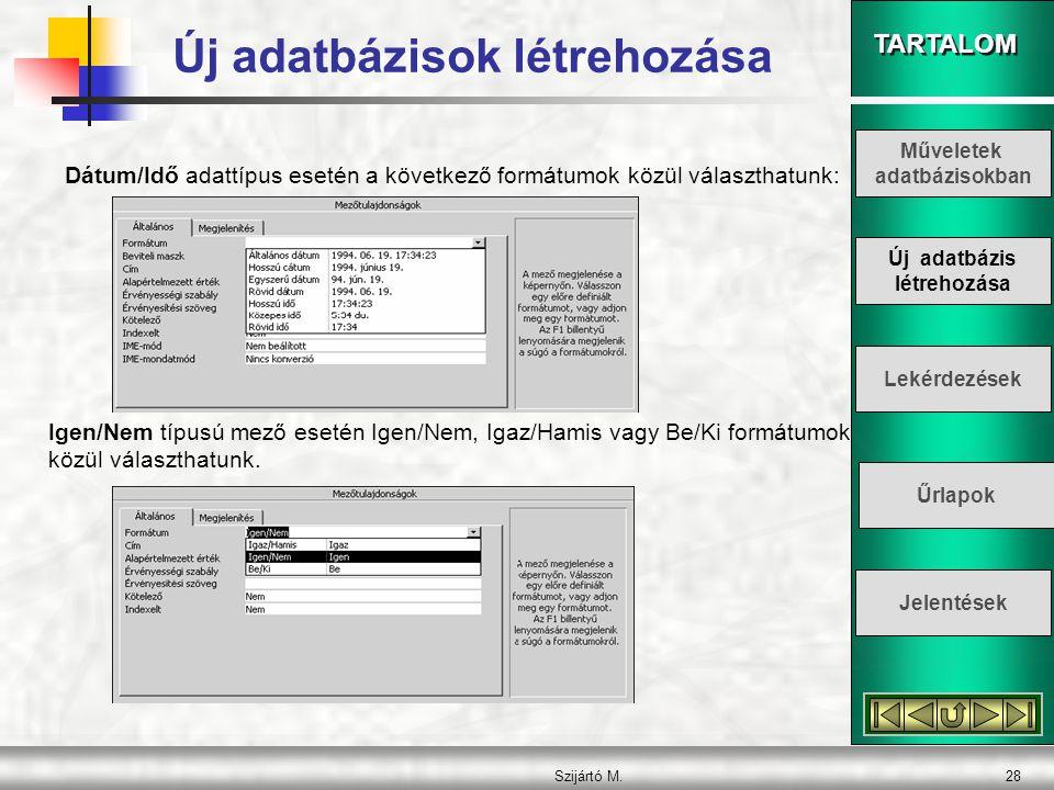 TARTALOM Szijártó M.28 Dátum/Idő adattípus esetén a következő formátumok közül választhatunk: Igen/Nem típusú mező esetén Igen/Nem, Igaz/Hamis vagy Be