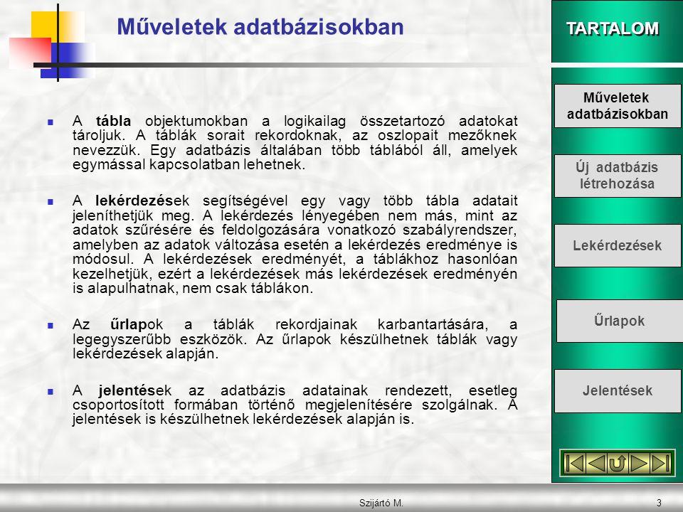 TARTALOM Szijártó M.4 Műveletek adatbázisokban  Az adatelérési lapok olyan weblapok, amelyek segítségével adatbázisunk a weben keresztül is kezelhető.