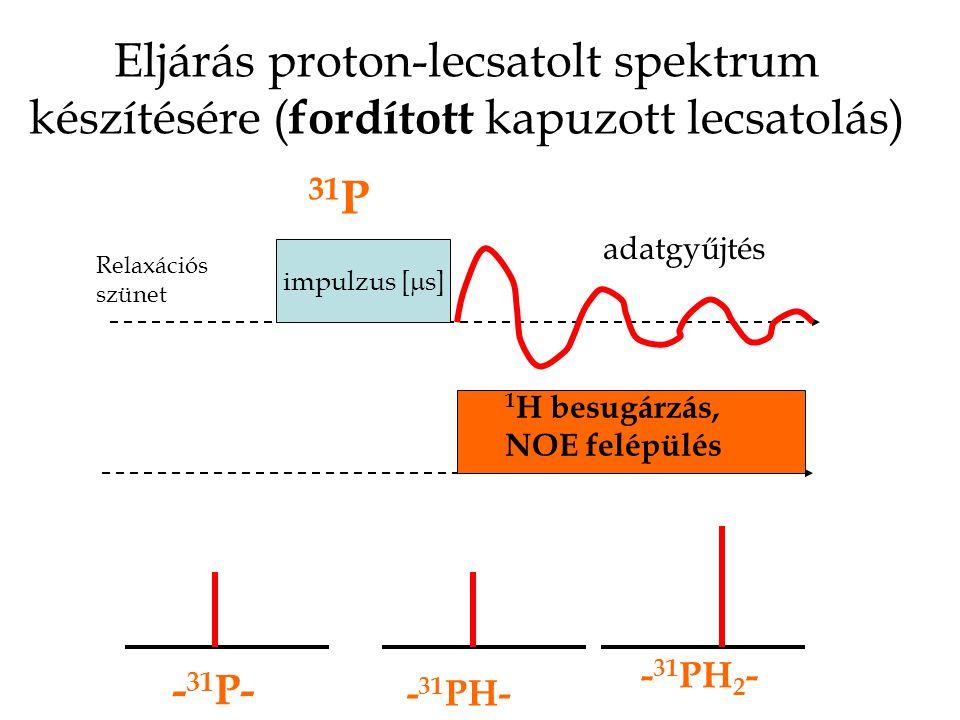 Eljárás proton-lecsatolt spektrum készítésére ( fordított kapuzott lecsatolás) impulzus [  s] 1 H besugárzás, NOE felépülés adatgyűjtés Relaxációs szünet 31 P - 31 P- - 31 PH- - 31 PH 2 -