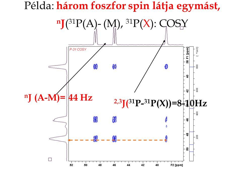 Példa: három foszfor spin látja egymást, n J ( 31 P(A)- (M), 31 P(X): COSY 2,3 J( 31 P- 31 P(X))=8-10Hz n J (A-M)= 44 Hz