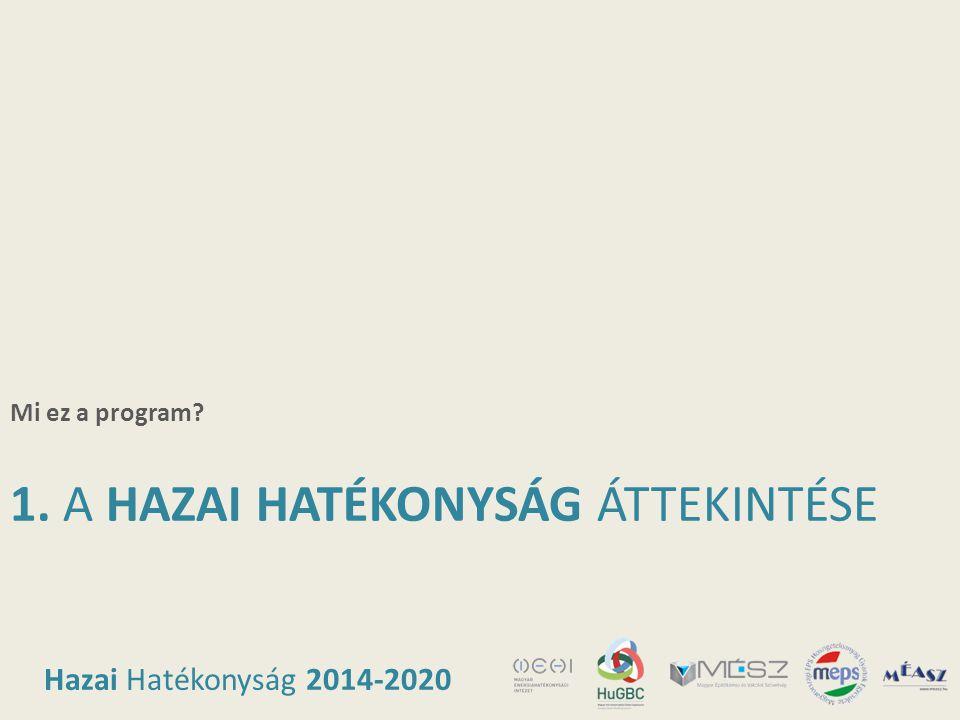 Hazai Hatékonyság 2014-2020 1. A HAZAI HATÉKONYSÁG ÁTTEKINTÉSE Mi ez a program?