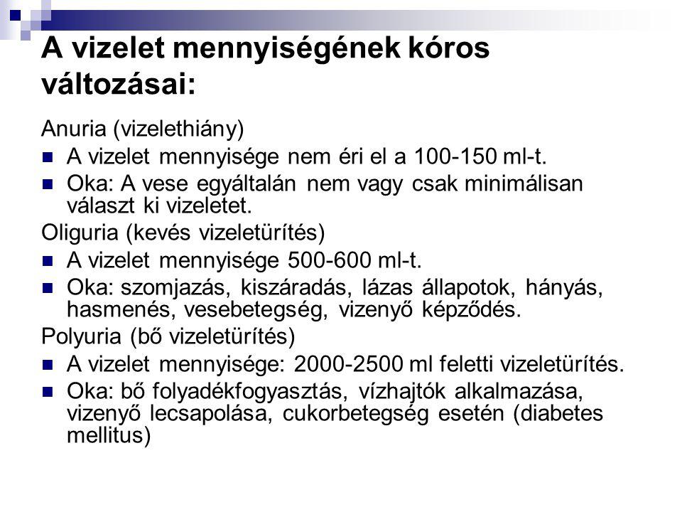 A vizelet mennyiségének kóros változásai: Anuria (vizelethiány)  A vizelet mennyisége nem éri el a 100-150 ml-t.  Oka: A vese egyáltalán nem vagy cs