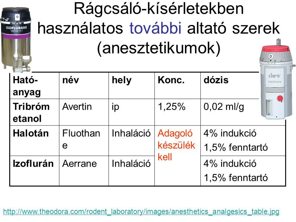 Rágcsáló-kísérletekben használatos további altató szerek (anesztetikumok) Ható- anyag névhelyKonc.dózis Tribróm etanol Avertinip1,25%0,02 ml/g HalotánFluothan e InhalációAdagoló készülék kell 4% indukció 1,5% fenntartó IzofluránAerraneInhaláció4% indukció 1,5% fenntartó http://www.theodora.com/rodent_laboratory/images/anesthetics_analgesics_table.jpg