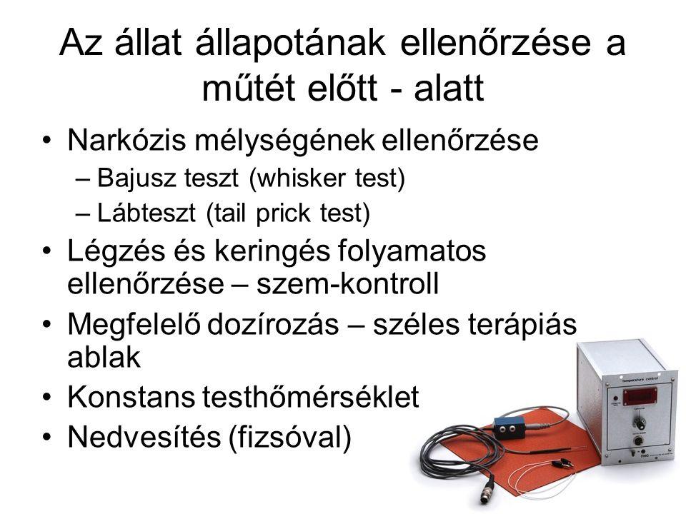 Az állat állapotának ellenőrzése a műtét előtt - alatt •Narkózis mélységének ellenőrzése –Bajusz teszt (whisker test) –Lábteszt (tail prick test) •Légzés és keringés folyamatos ellenőrzése – szem-kontroll •Megfelelő dozírozás – széles terápiás ablak •Konstans testhőmérséklet •Nedvesítés (fizsóval)