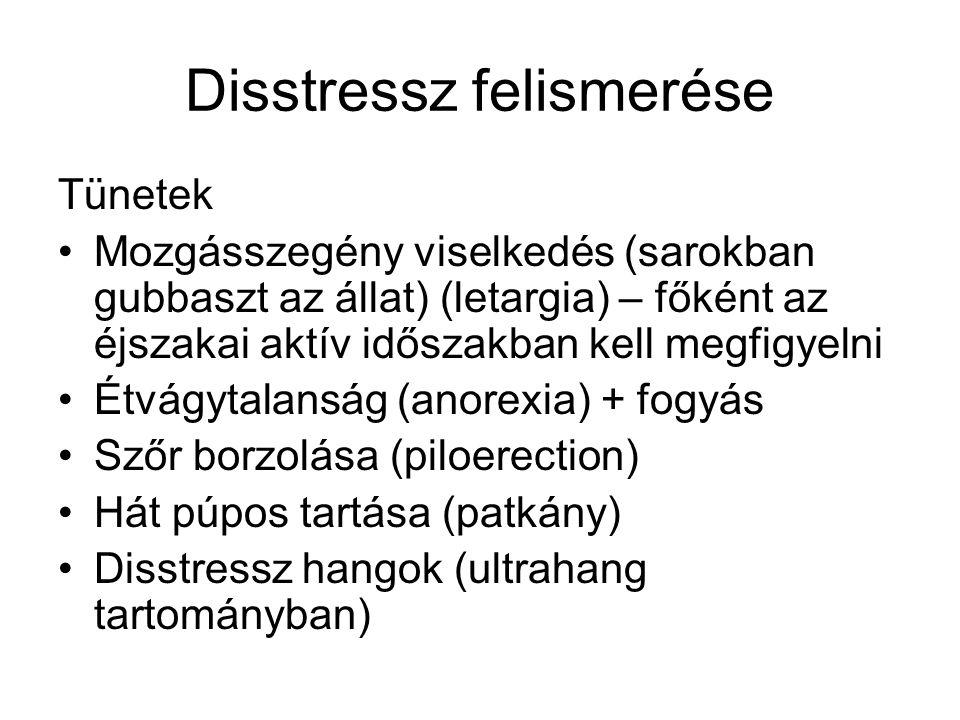 Disstressz felismerése Tünetek •Mozgásszegény viselkedés (sarokban gubbaszt az állat) (letargia) – főként az éjszakai aktív időszakban kell megfigyelni •Étvágytalanság (anorexia) + fogyás •Szőr borzolása (piloerection) •Hát púpos tartása (patkány) •Disstressz hangok (ultrahang tartományban)