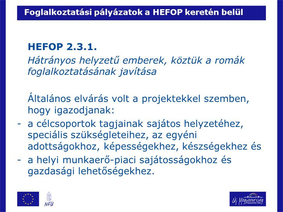 Foglalkoztatási pályázatok a HEFOP keretén belül HEFOP 2.3.1.