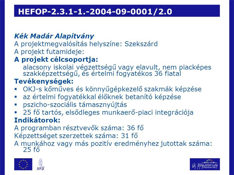 HEFOP-2.3.1-1.-2004-09-0001/2.0 Kék Madár Alapítvány A projektmegvalósítás helyszíne: Szekszárd A projekt futamideje: A projekt célcsoportja: alacsony iskolai végzettségű vagy elavult, nem piacképes szakképzettségű, és értelmi fogyatékos 36 fiatal Tevékenységek:  OKJ-s kőműves és könnyűgépkezelő szakmák képzése  az értelmi fogyatékkal élőknek betanító képzése  pszicho-szociális támasznyújtás  25 fő tartós, elsődleges munkaerő-piaci integrációja Indikátorok: A programban résztvevők száma: 36 fő Képzettséget szerzettek száma: 31 fő A munkához vagy más pozitív eredményhez jutottak száma: 25 fő