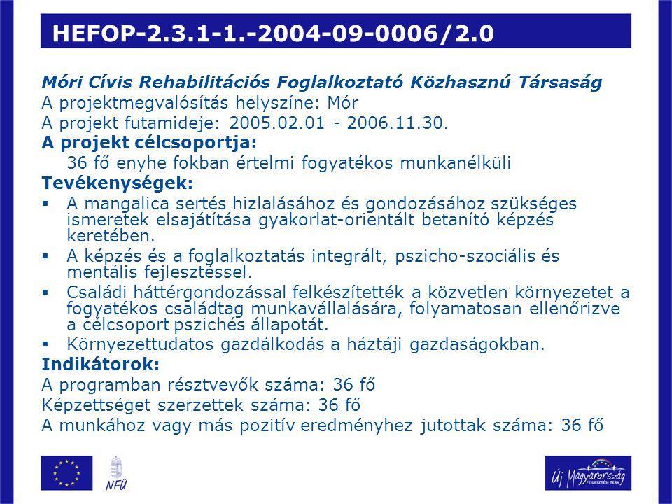 HEFOP-2.3.1-1.-2004-09-0006/2.0 Móri Cívis Rehabilitációs Foglalkoztató Közhasznú Társaság A projektmegvalósítás helyszíne: Mór A projekt futamideje: 2005.02.01 - 2006.11.30.