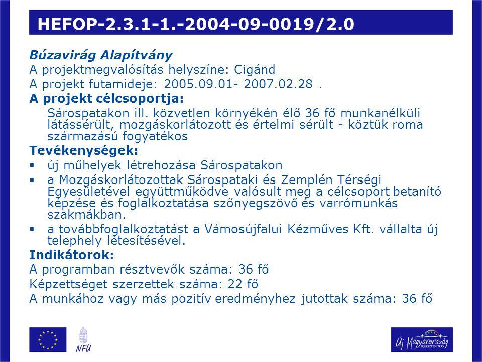 HEFOP-2.3.1-1.-2004-09-0019/2.0 Búzavirág Alapítvány A projektmegvalósítás helyszíne: Cigánd A projekt futamideje: 2005.09.01- 2007.02.28.
