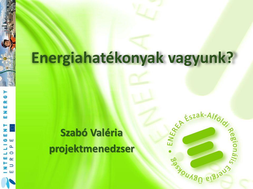 Energiahatékonyak vagyunk Szabó Valéria projektmenedzser