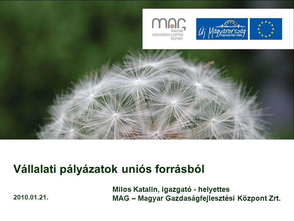 2006.ÚMFT (2007-2013.) NFT I. (2004-2006.) Hazai pályázatok GOP/KMOP GVOP (ÖM, KTIA, KKC) MAG Zrt.