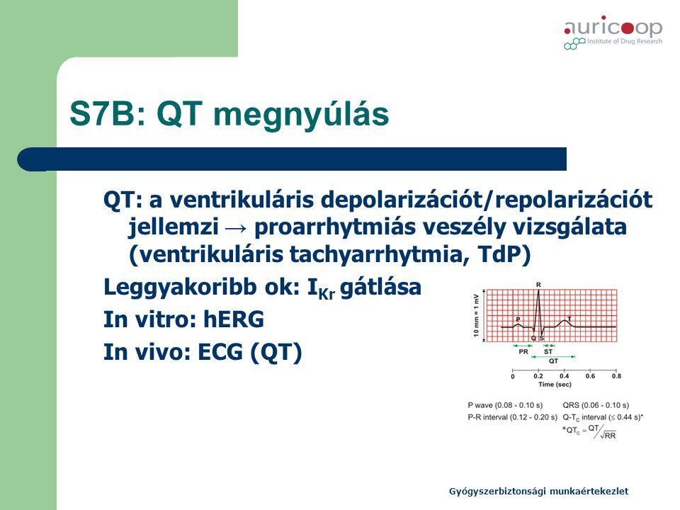 Gyógyszerbiztonsági munkaértekezlet S7B: QT megnyúlás QT: a ventrikuláris depolarizációt/repolarizációt jellemzi → proarrhytmiás veszély vizsgálata (v