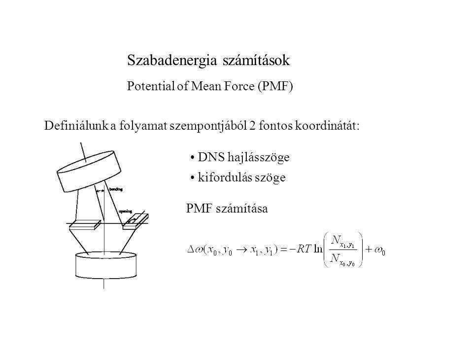 Szabadenergia számítások Potential of Mean Force (PMF) Definiálunk a folyamat szempontjából 2 fontos koordinátát: • DNS hajlásszöge • kifordulás szöge