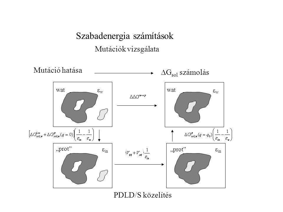 """Szabadenergia számítások Mutáció hatása Mutációk vizsgálata  G sol számolás wat """"prot"""" wat """"prot"""" ww ww  in PDLD/S közelítés"""