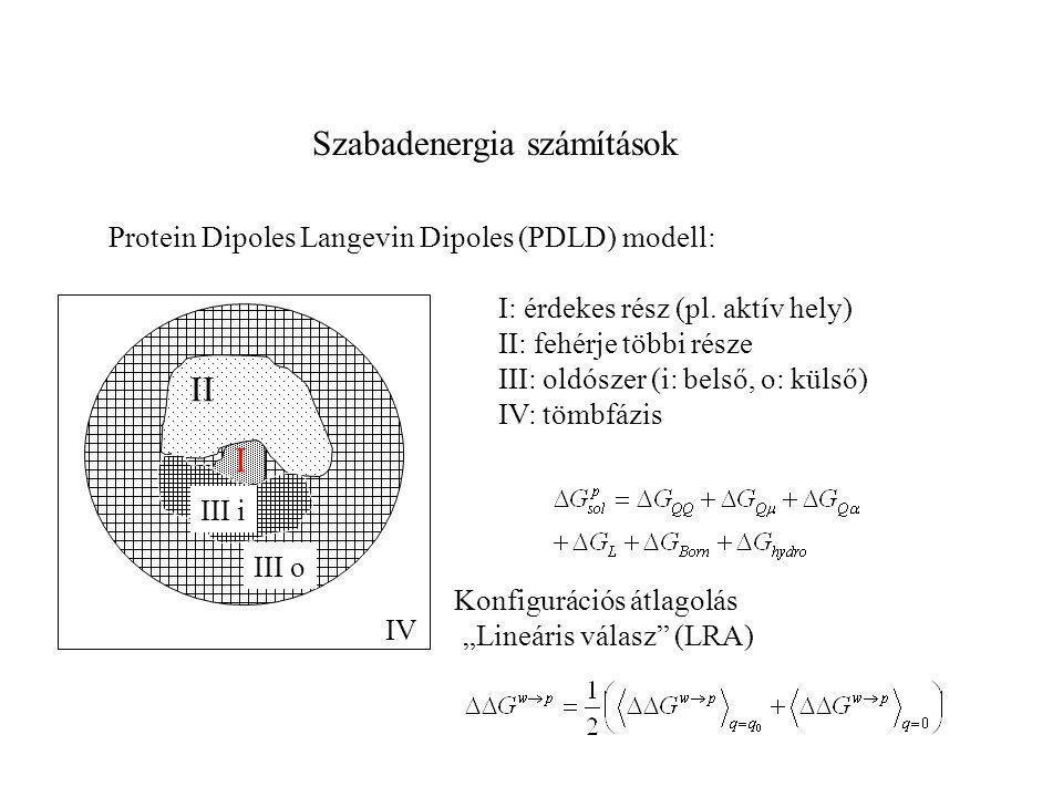 Szabadenergia számítások Protein Dipoles Langevin Dipoles (PDLD) modell: II I III o IV III i I: érdekes rész (pl. aktív hely) II: fehérje többi része