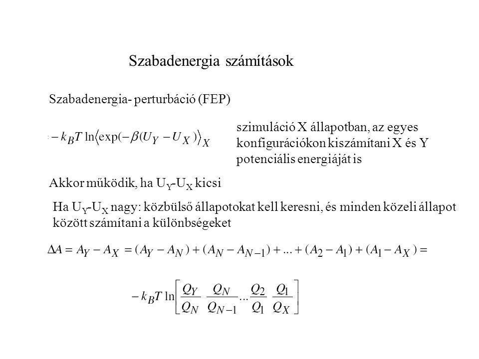 Szabadenergia számítások Szabadenergia- perturbáció (FEP) Technika:  paraméter definiálása, mely a rendszert egyik állapotból a másikba viszi P=  P X +(1-  )P Y  paramétert N lépésben változtatjuk minden i, i+1 pont között számítjuk az A értékét.