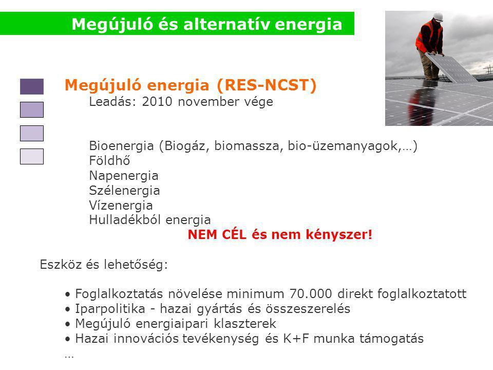 Megújuló energia (RES-NCST) Leadás: 2010 november vége Bioenergia (Biogáz, biomassza, bio-üzemanyagok,…) Földhő Napenergia Szélenergia Vízenergia Hulladékból energia NEM CÉL és nem kényszer.