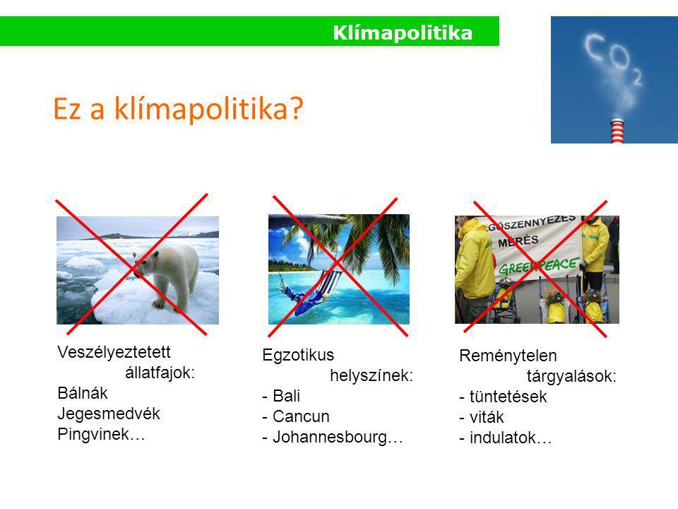 Klímapolitika Ez a klímapolitika? Egzotikus helyszínek: - Bali - Cancun - Johannesbourg… Veszélyeztetett állatfajok: Bálnák Jegesmedvék Pingvinek… Rem