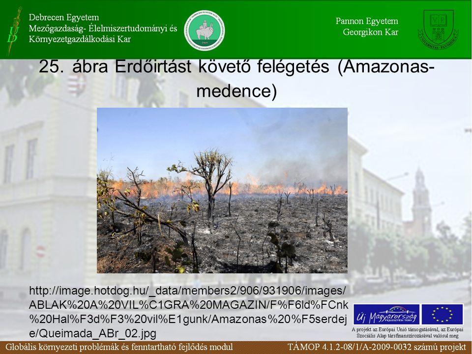 25. ábra Erdőirtást követő felégetés (Amazonas- medence) http://image.hotdog.hu/_data/members2/906/931906/images/ ABLAK%20A%20VIL%C1GRA%20MAGAZIN/F%F6