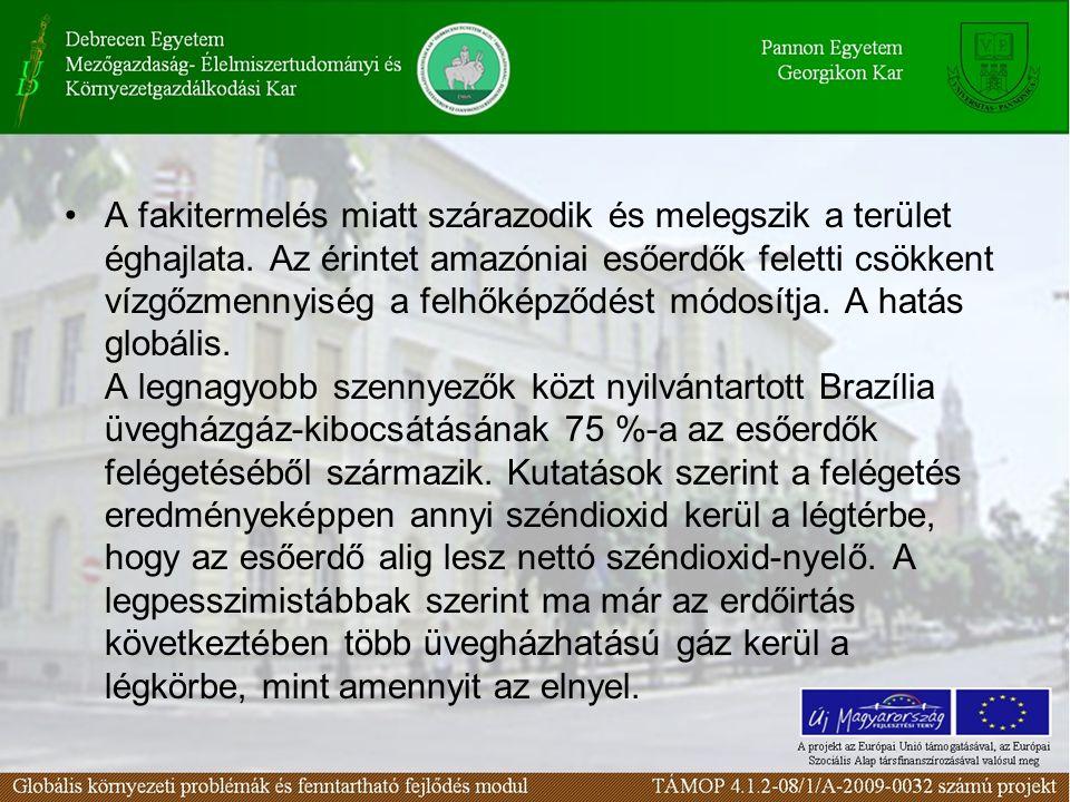 •A fakitermelés miatt szárazodik és melegszik a terület éghajlata. Az érintet amazóniai esőerdők feletti csökkent vízgőzmennyiség a felhőképződést mód