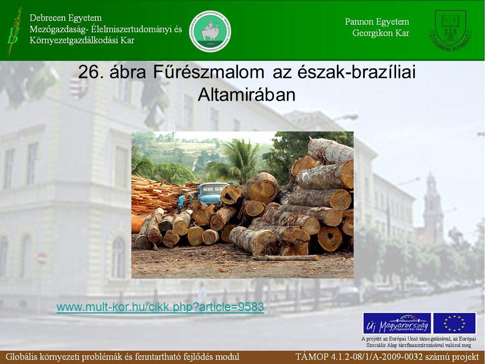 26. ábra Fűrészmalom az észak-brazíliai Altamirában www.mult-kor.hu/cikk.php?article=9583