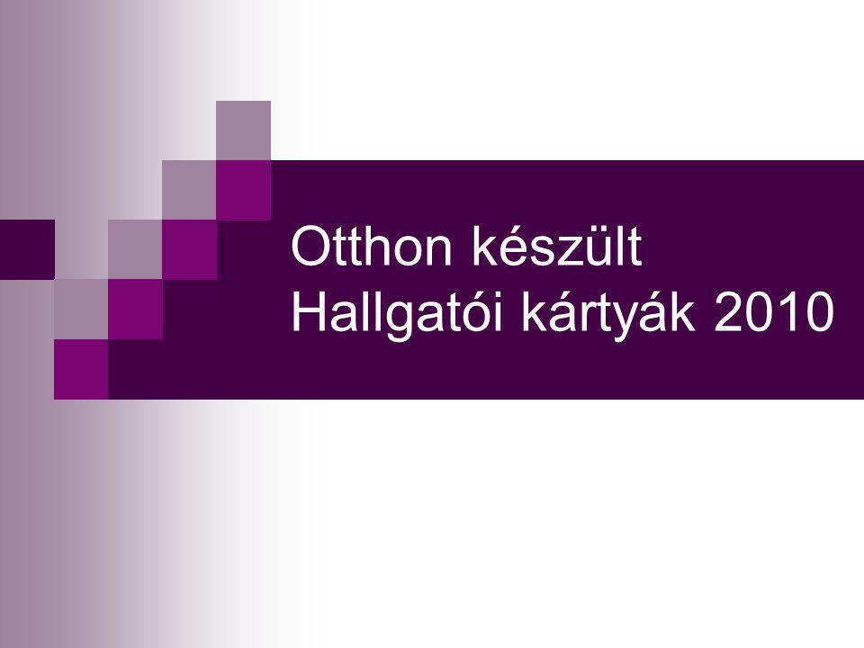 Csoportmunka kártya/2 2009 (Cserna Erika, Szilágyi Szilvia, Varsányi Viktória, Nagy Edit) 7.