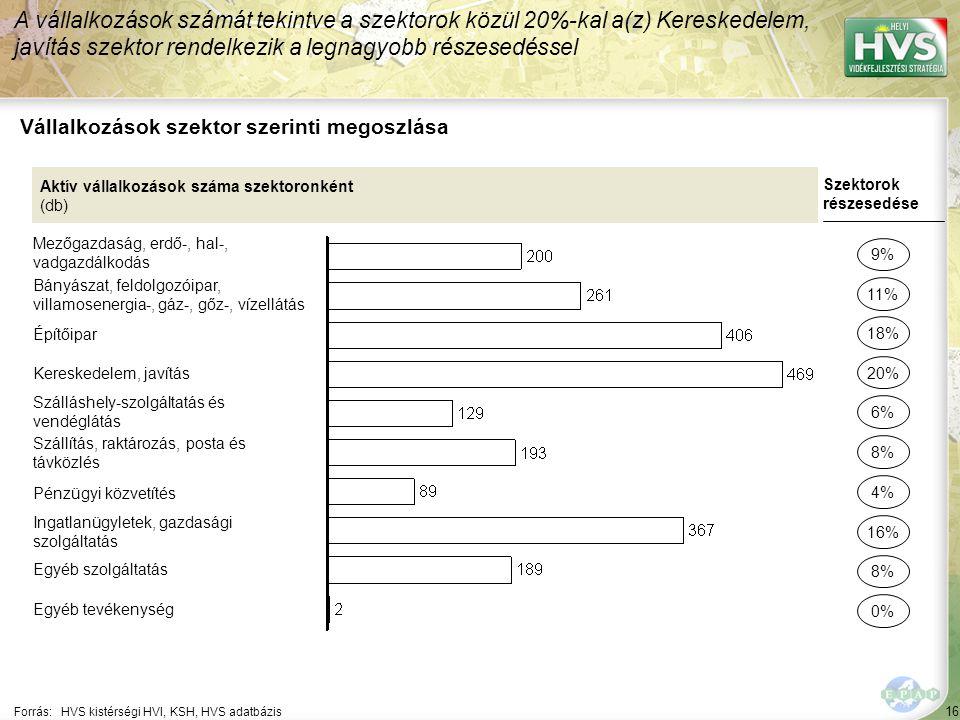 16 Forrás:HVS kistérségi HVI, KSH, HVS adatbázis Vállalkozások szektor szerinti megoszlása A vállalkozások számát tekintve a szektorok közül 20%-kal a(z) Kereskedelem, javítás szektor rendelkezik a legnagyobb részesedéssel Aktív vállalkozások száma szektoronként (db) Mezőgazdaság, erdő-, hal-, vadgazdálkodás Bányászat, feldolgozóipar, villamosenergia-, gáz-, gőz-, vízellátás Építőipar Kereskedelem, javítás Szálláshely-szolgáltatás és vendéglátás Szállítás, raktározás, posta és távközlés Pénzügyi közvetítés Ingatlanügyletek, gazdasági szolgáltatás Egyéb szolgáltatás Egyéb tevékenység Szektorok részesedése 9% 11% 20% 6% 8% 16% 8% 0% 18% 4%