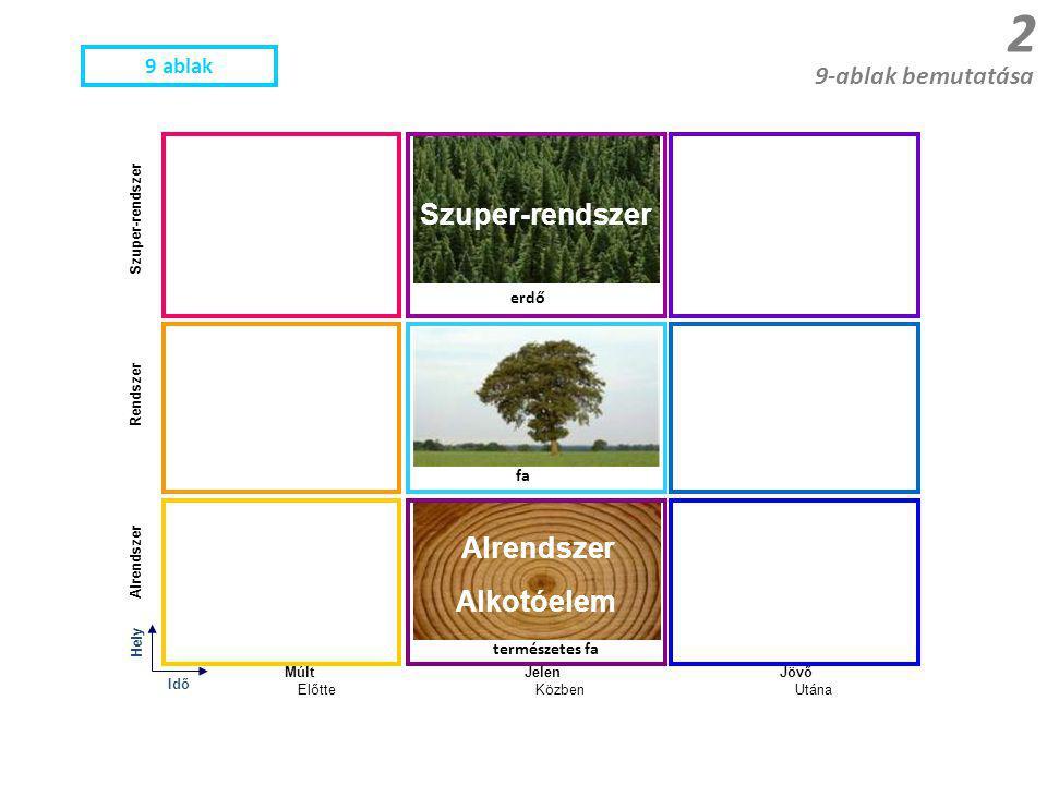Hely MúltJelenJövő Rendszer Alrendszer Szuper-rendszer fa erdő természetes fa Idő 9-ablak bemutatása 2 ElőtteKözbenUtána 9 ablak Szuper-rendszer Alrendszer Alkotóelem