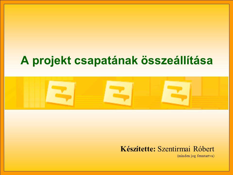 Munkacsapat •Szűkebben vett értelemben munkacsapatnak nevezzük a programban azon erőforrások halmazát, melyeket igénybe vehetünk a projekt során.