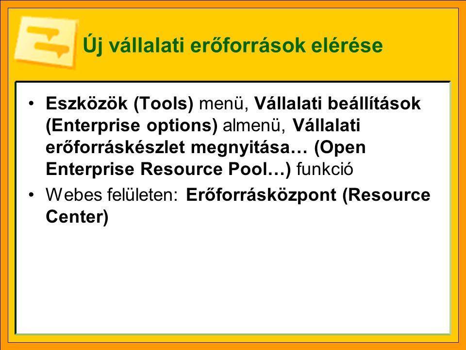 Új vállalati erőforrások elérése •Eszközök (Tools) menü, Vállalati beállítások (Enterprise options) almenü, Vállalati erőforráskészlet megnyitása… (Open Enterprise Resource Pool…) funkció •Webes felületen: Erőforrásközpont (Resource Center)