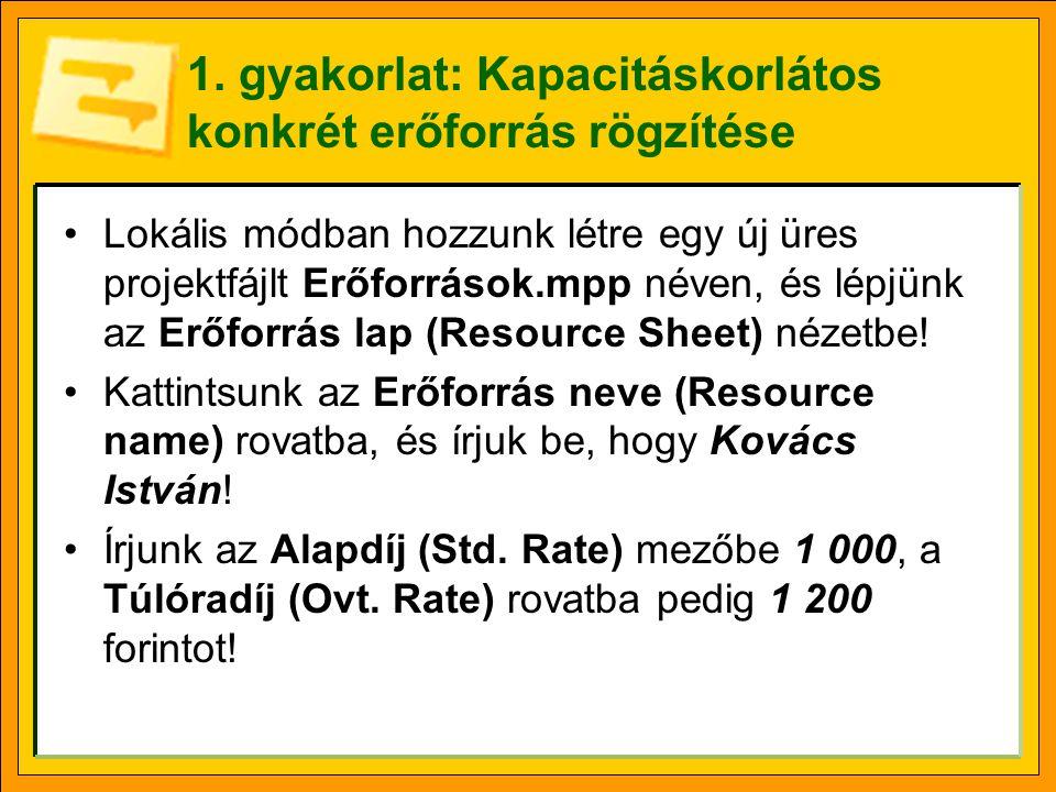 1. gyakorlat: Kapacitáskorlátos konkrét erőforrás rögzítése •Lokális módban hozzunk létre egy új üres projektfájlt Erőforrások.mpp néven, és lépjünk a