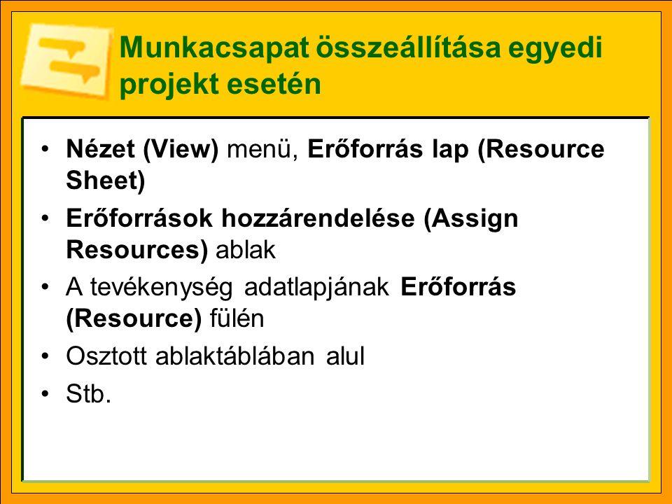 Munkacsapat összeállítása egyedi projekt esetén •Nézet (View) menü, Erőforrás lap (Resource Sheet) •Erőforrások hozzárendelése (Assign Resources) ablak •A tevékenység adatlapjának Erőforrás (Resource) fülén •Osztott ablaktáblában alul •Stb.