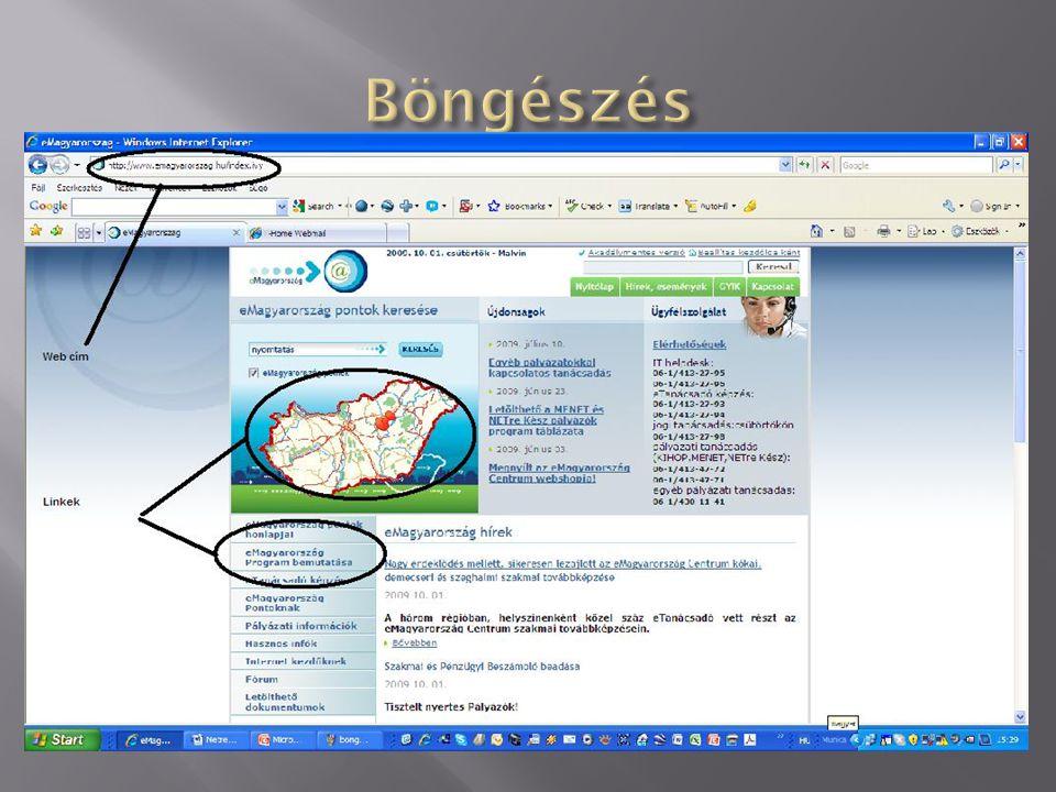 Az ablak felső fehér részébe gépelheti be a kívánt oldal nevét, pontos címét a webcímet.