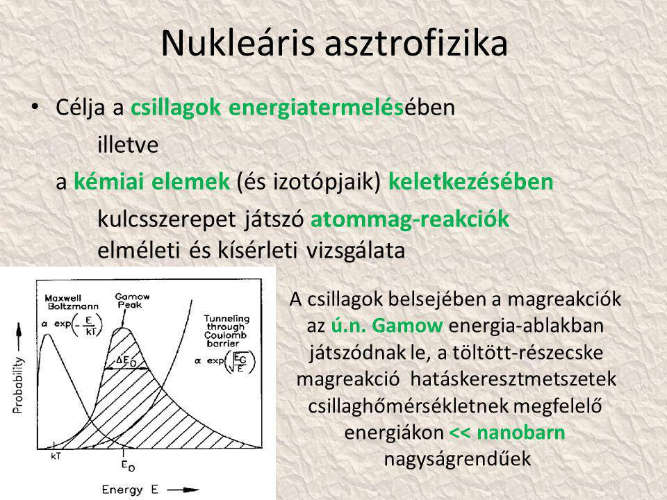 Nukleáris asztrofizika • Célja a csillagok energiatermelésében illetve a kémiai elemek (és izotópjaik) keletkezésében kulcsszerepet játszó atommag-reakciók elméleti és kísérleti vizsgálata A csillagok belsejében a magreakciók az ú.n.