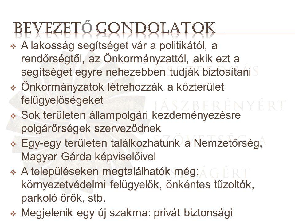  A lakosság segítséget vár a politikától, a rendőrségtől, az Önkormányzattól, akik ezt a segítséget egyre nehezebben tudják biztosítani  Önkormányzatok létrehozzák a közterület felügyelőségeket  Sok területen állampolgári kezdeményezésre polgárőrségek szerveződnek  Egy-egy területen találkozhatunk a Nemzetőrség, Magyar Gárda képviselőivel  A településeken megtalálhatók még: környezetvédelmi felügyelők, önkéntes tűzoltók, parkoló őrök, stb.