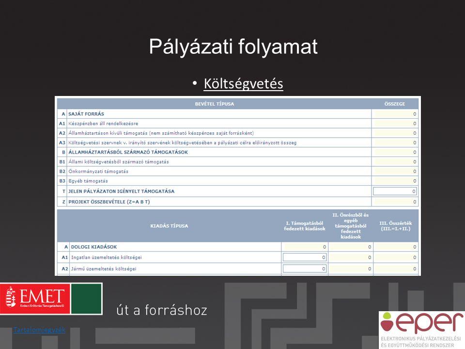 Pályázati folyamat • Költségvetés Tartalomjegyzék