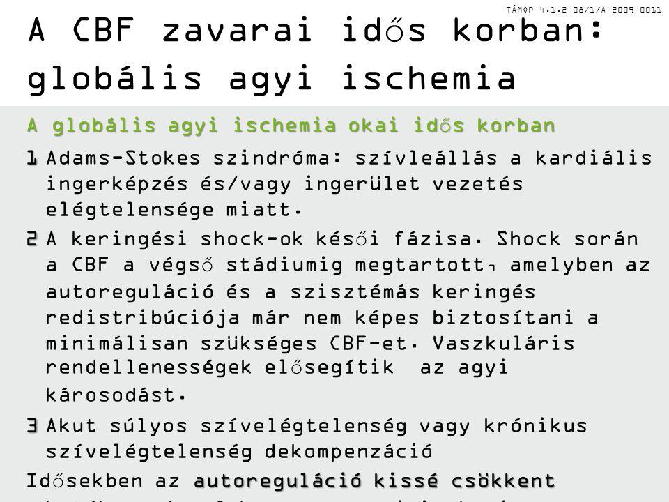 TÁMOP-4.1.2-08/1/A-2009-0011 A CBF zavarai idős korban: globális agyi ischemia A globális agyi ischemia okai idős korban 1 1Adams-Stokes szindróma: sz