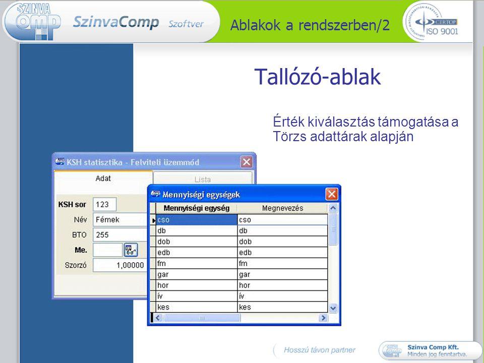 Ablakok a rendszerben/3 Lista-ablak Kimutatás indítása szűrési feltétel megadással