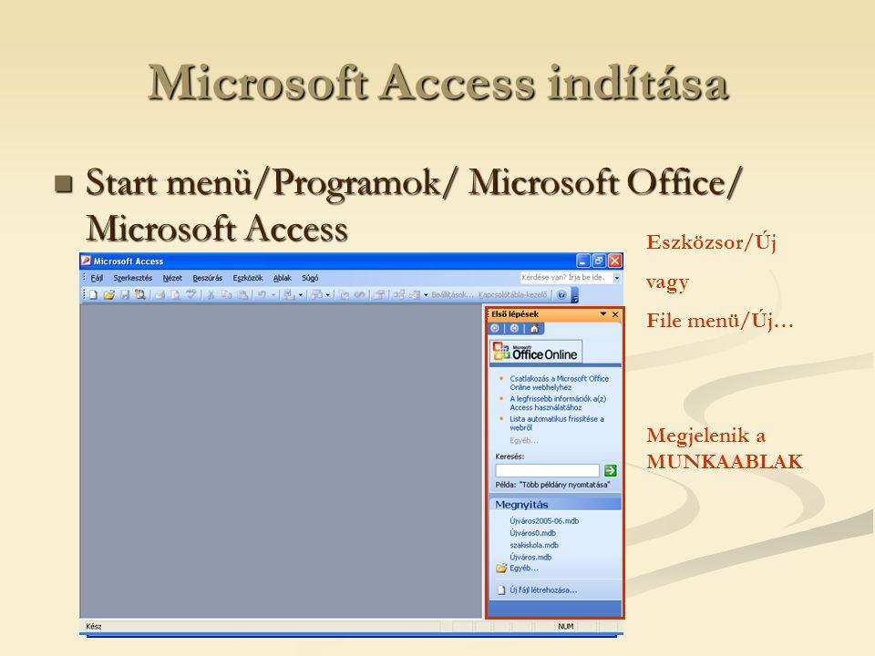 Microsoft Access indítása  Start menü/Programok/ Microsoft Office/ Microsoft Access Eszközsor/Új vagy File menü/Új… Megjelenik a MUNKAABLAK