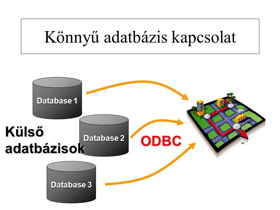 Könnyű adatbázis kapcsolat Database 1 Database 2 Database 3 ODBC Külsőadatbázisok