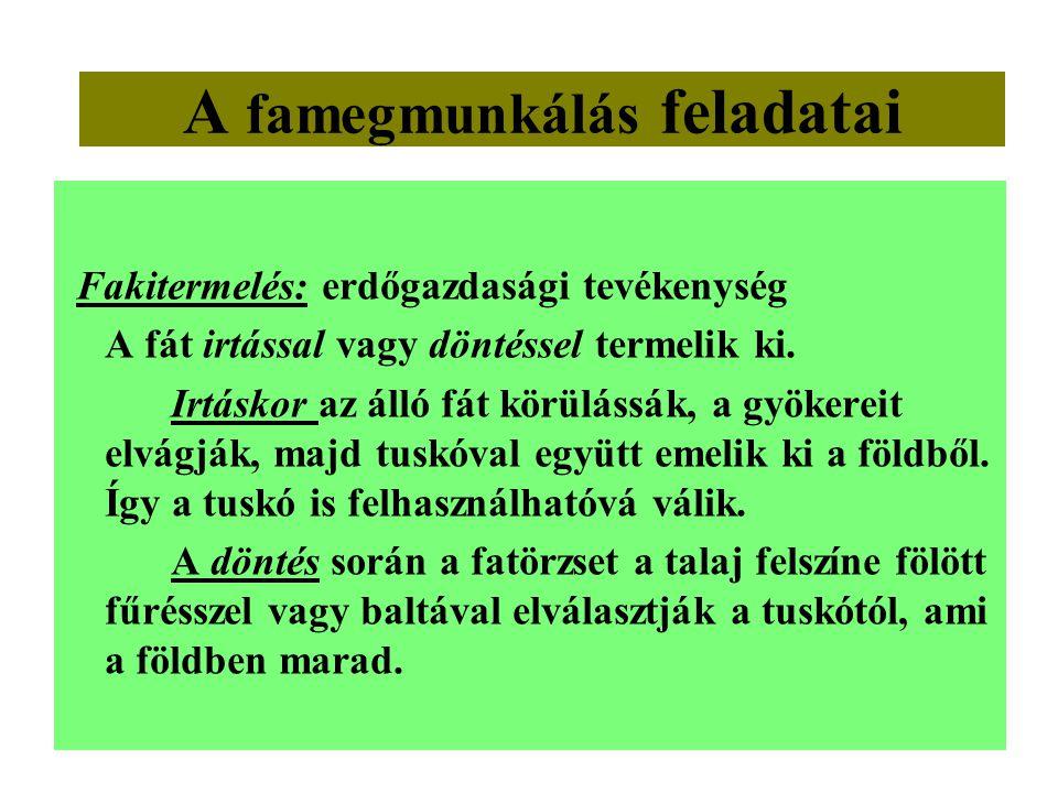 A famegmunkálás feladatai Fakitermelés: erdőgazdasági tevékenység A fát irtással vagy döntéssel termelik ki. Irtáskor az álló fát körülássák, a gyöker